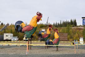 6_Tag_Chicken01